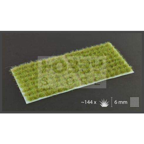 Gamers Grass TUFTS Realisztikus Dry Green színű fűcsomók diorámához-Small 144 darab (6 mm self-adhesive - DRY GREEN)